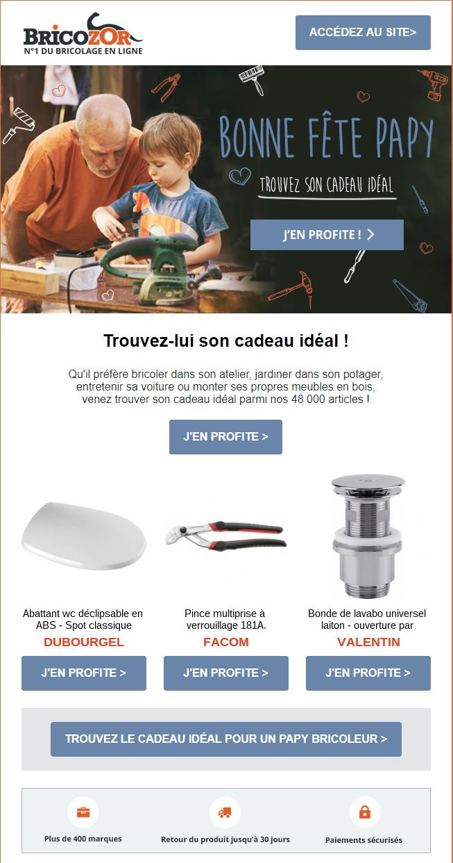 newsletter bricozor